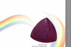 Rare Deep Red Velvet Color 576 Carat, The Rahula Ruby with Special design cut by, Steven Zale